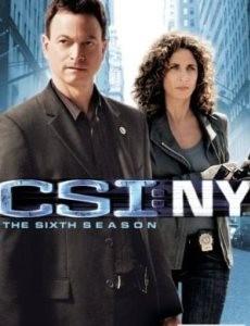 C.S.I.: Место преступления Нью-Йорк