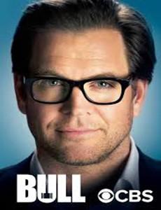 Мистер Булл